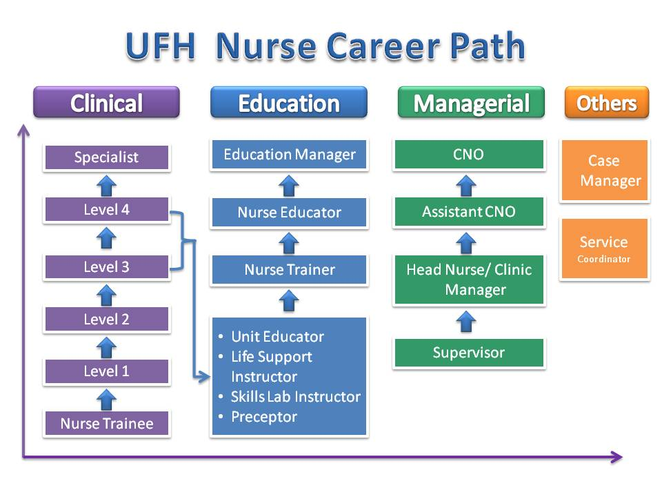 UFH Nursing Promotion Program   UFH
